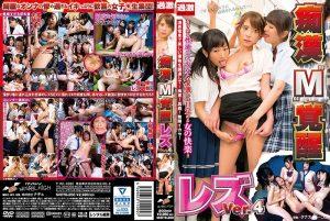 [NHDTB-200] 痴漢'M'覚醒 レズVer.4 Minami Riona Lesbian 拘束  Hanasaki Ian
