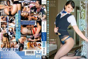 [STARS-006] 本庄鈴 美人キャビンアテンダントを高級ホテルの一室でいいなり調教 SOD star スレンダー お姉さん Stewardess 嵐山みちる