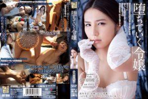 [ADN-052] 堕ちていく令嬢 小口田桂子 Drama Koguchida Keiko 岸育造 Attackers Otona No Drama