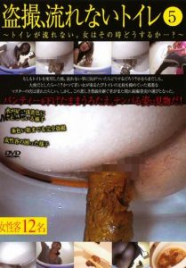 [DSDA-65] –  盗撮、流れないトイレ 5その他フェチ 盗撮 放尿 脱糞