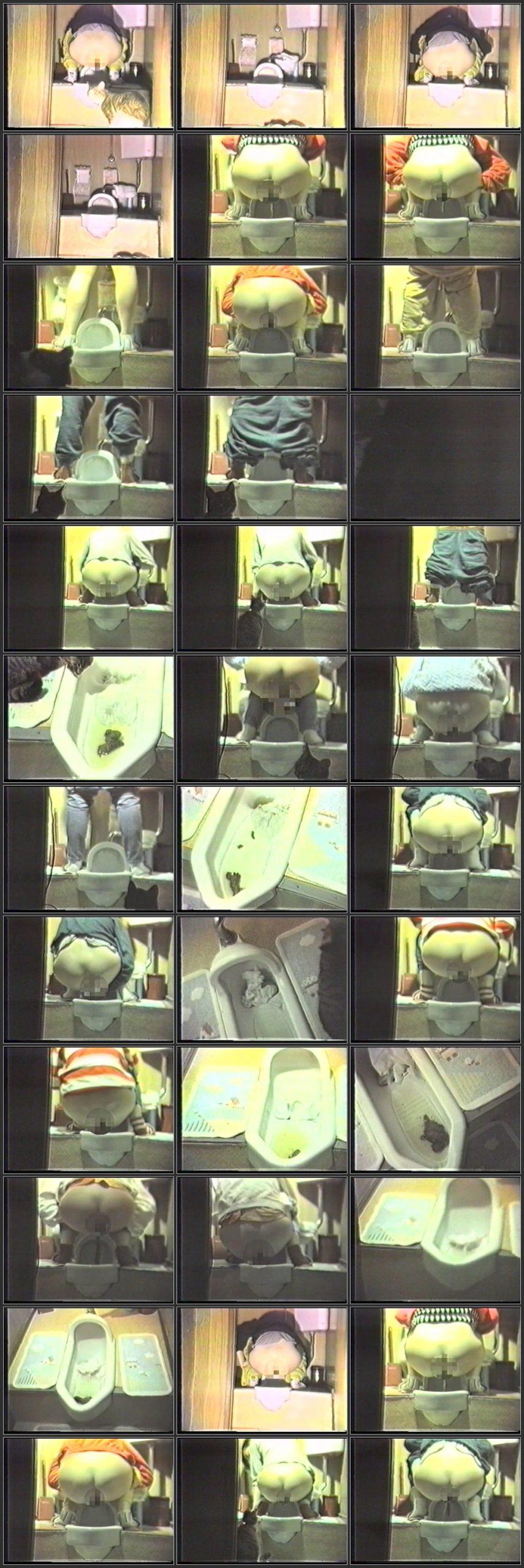 DVK 007 t scaled - [DVK-007] Toilet. アマチュア排便ビデオ智子のコンタクトトイレの日記を行うことができます Amateur
